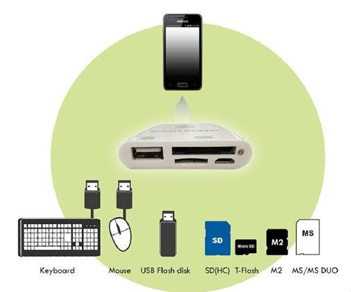 773145845_581 Silicon.PK